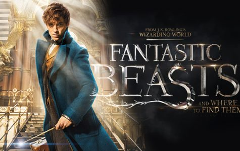 Fantastic Beasts and Where to Find Them attracts Potter fans