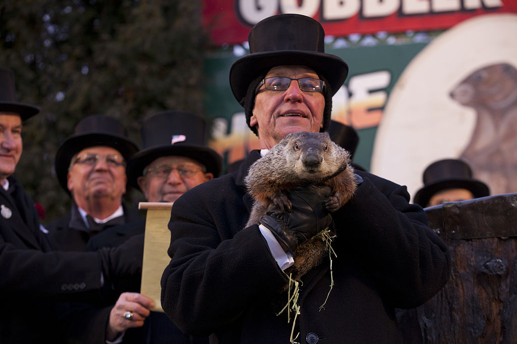 Punxsutawney Phil is held aloft on Groundhog Day in 2013.
