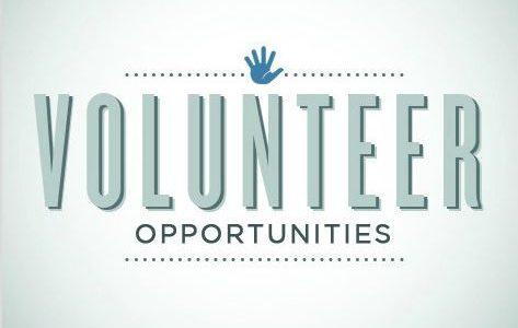 Summer volunteers wanted