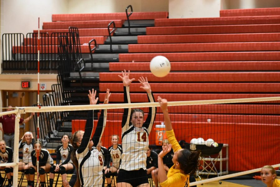 Girls volleyball on the rise
