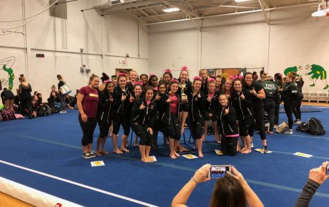 Boro Gymnastics leaps and tumbles its way join the best in the state