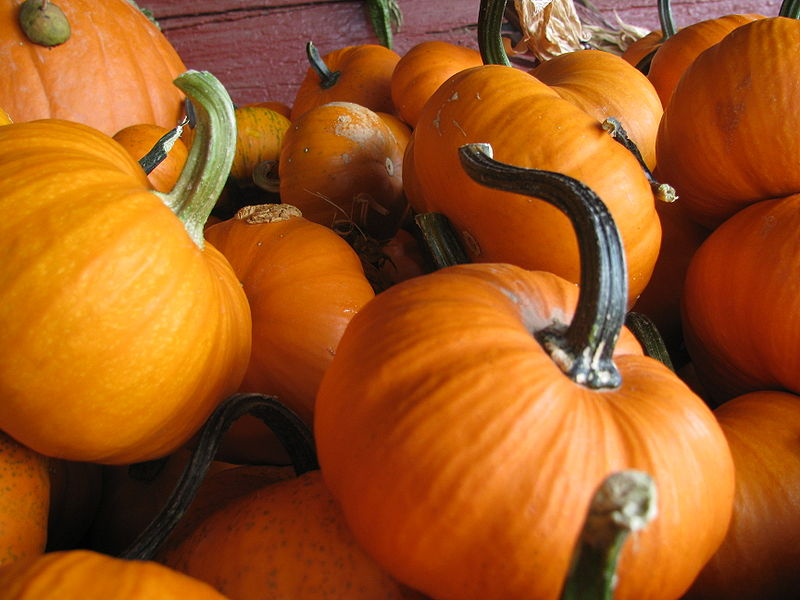 October+offers+countless+opportunities+for+in-school+and+weekend+activities.
