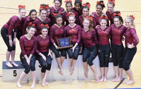 HHS Gymnastics storms to fifth straight sectional title