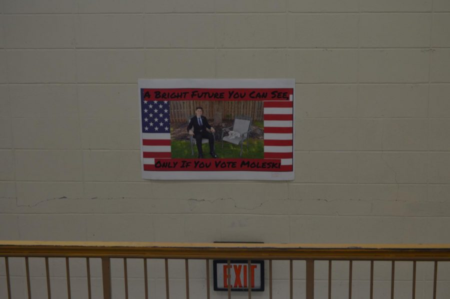 Freshman+presidential+candidate+Luke+Moleski%27s+campaign+posters+are+among+the+most+eye-catching.