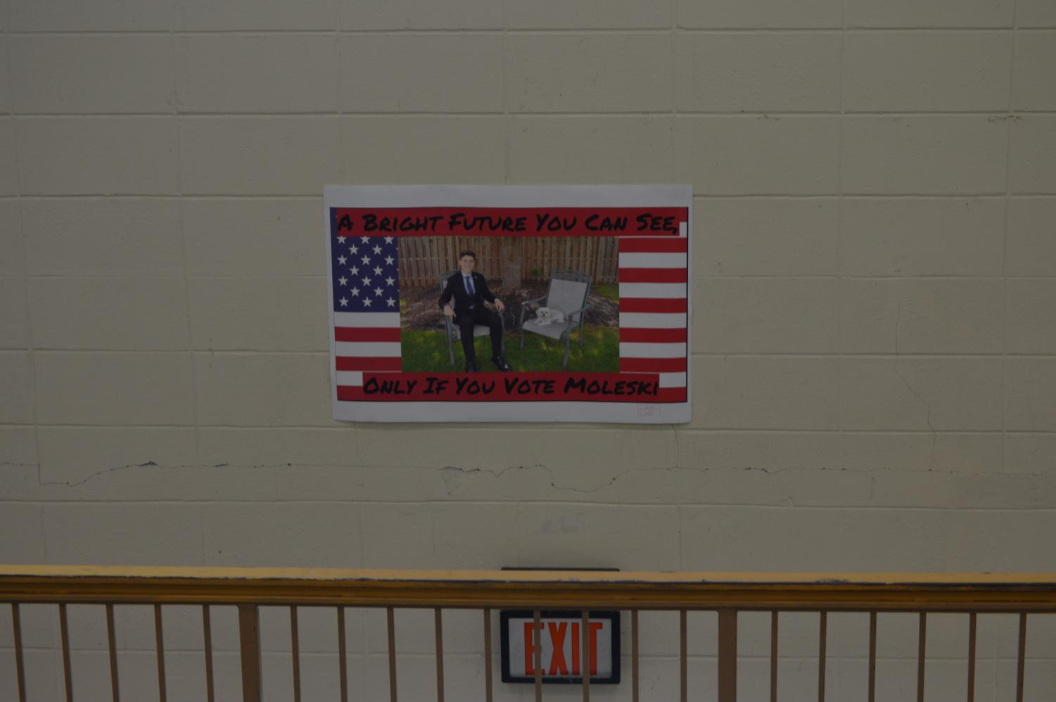 Freshman presidential candidate Luke Moleski's campaign posters are among the most eye-catching.