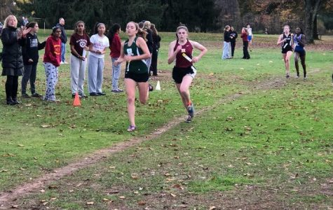 Girl's Cross Country Rounds Out Successful Season