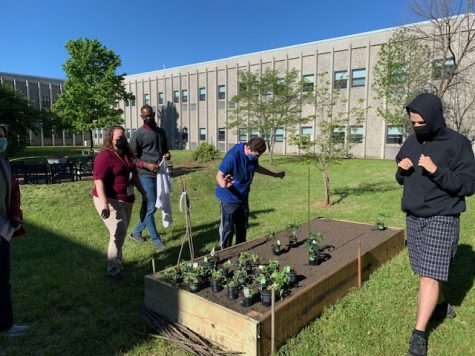 Several students tend to the new garden at HHS every week.